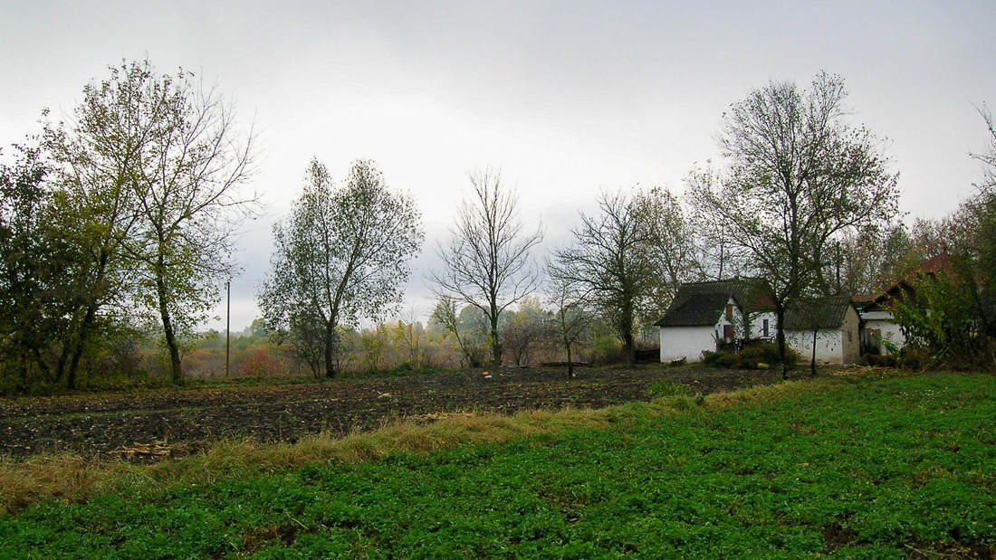 Farmhouse in Dubinka, Ukraine
