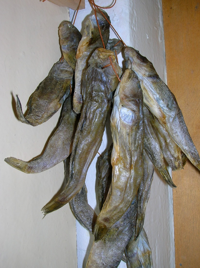 Salted Goby Fish