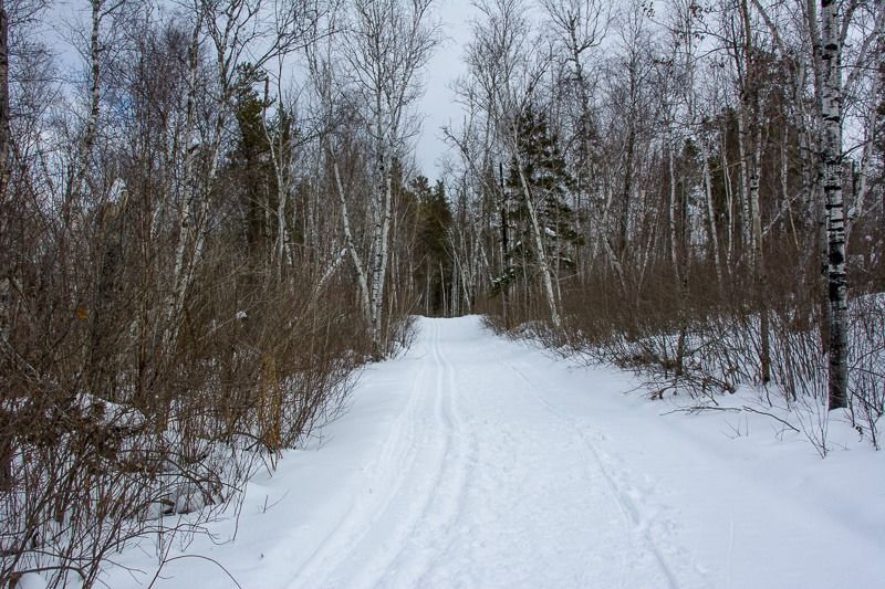 Groomed ski trails and hiking trails