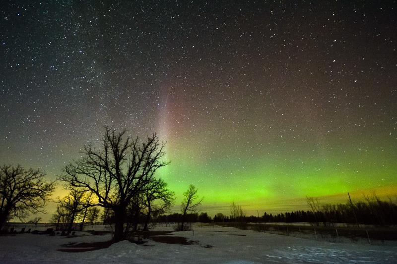 Modest Aurora show