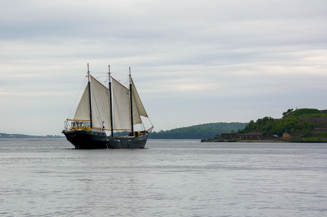 Tall Ship Silva, a 130' schooner