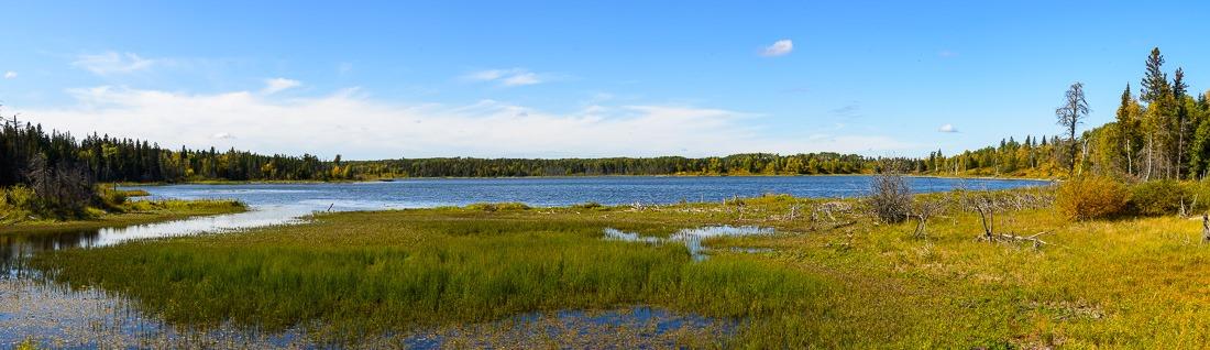 Shanty Lake