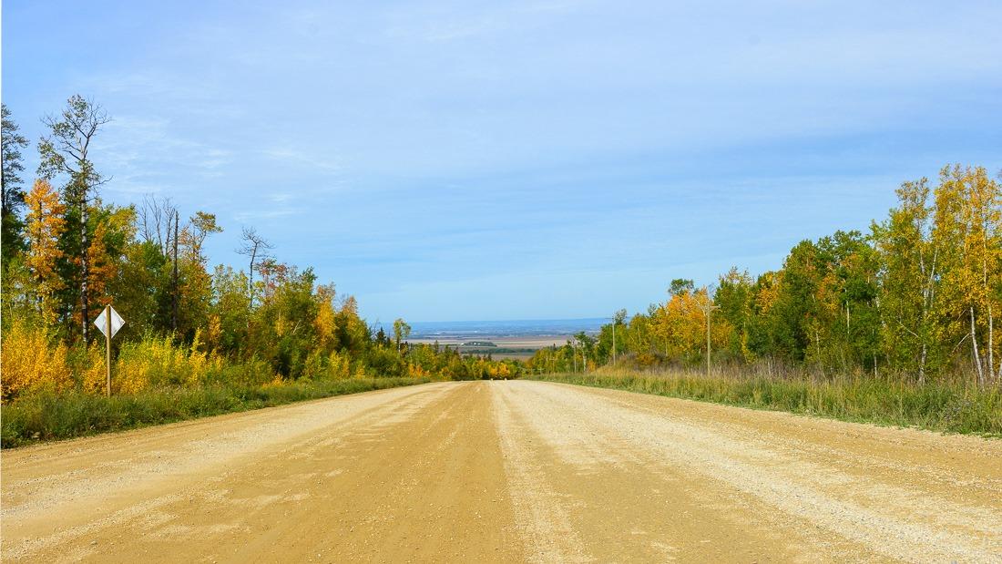 Duck road