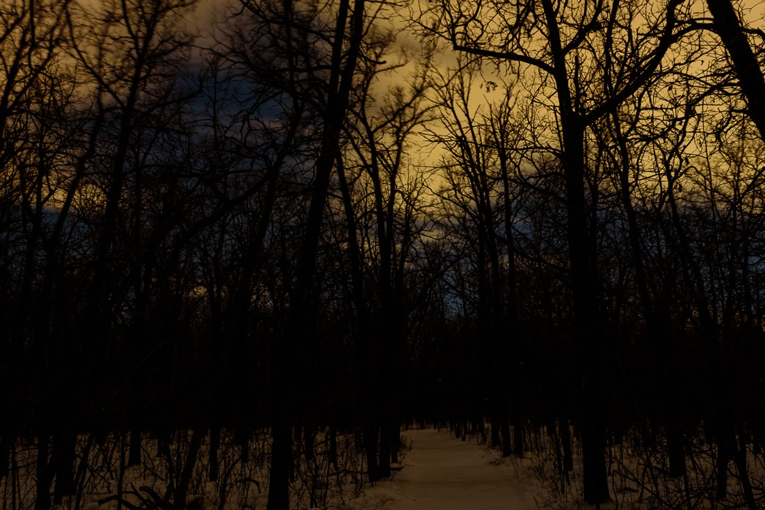 Creepy, sickening light