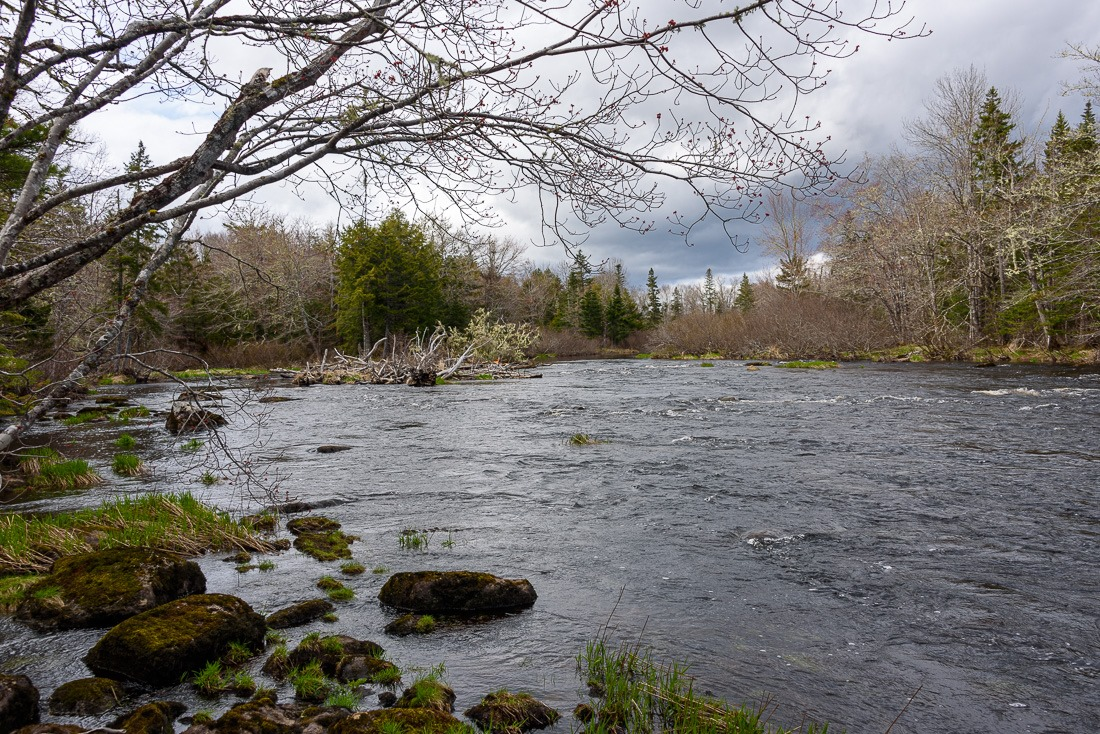 Musquodoboit Rapids