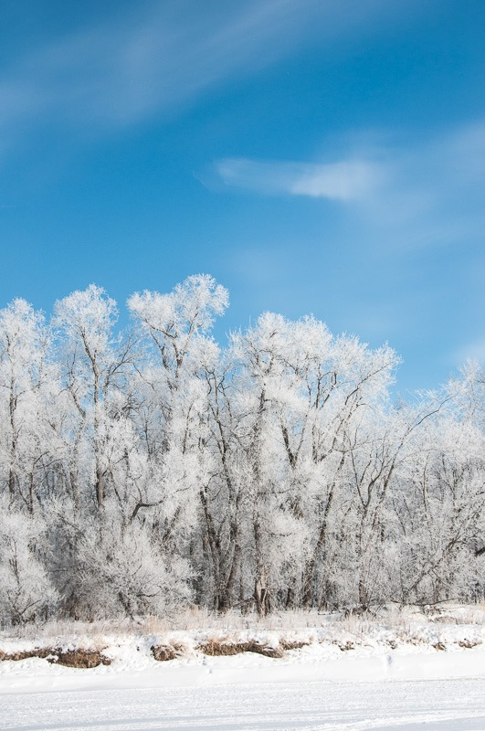 Hoarfrost, an easy target