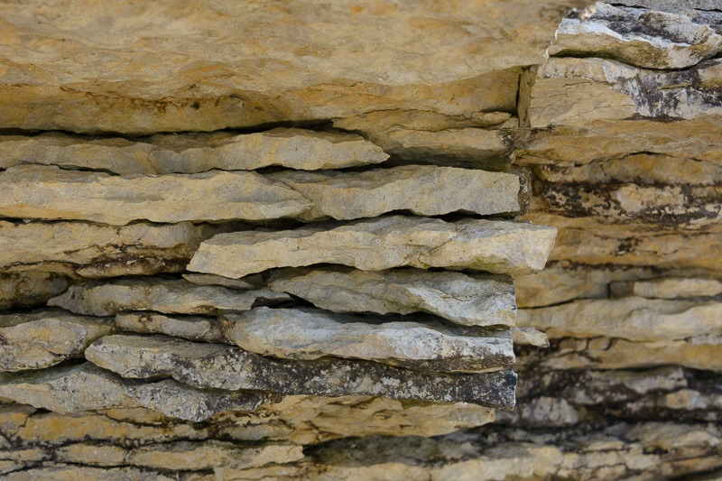 Layers of limestone rock, filled with fossils