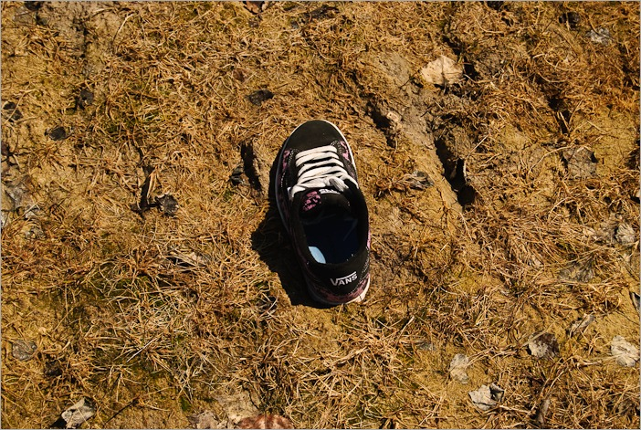 Left over shoe, stuck in the mud