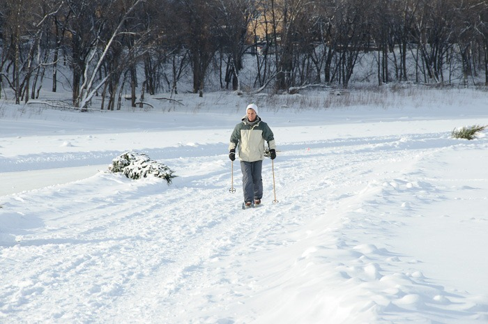 One brave cross-country skier